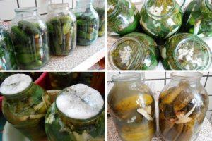 Огурцы на зиму хрустящие без стерилизации