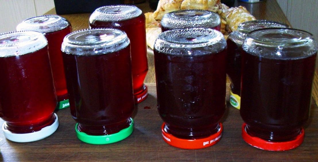 vinogradnyy-sok-v-domashnih-usloviyah